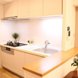 トーア駒込マンション(3階,)のキッチン
