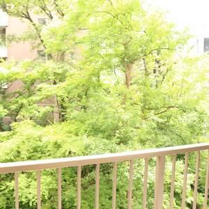 トーア駒込マンション(3階,)のお部屋からの眺望