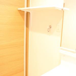 トーア駒込マンション(3階,)の化粧室・脱衣所・洗面室