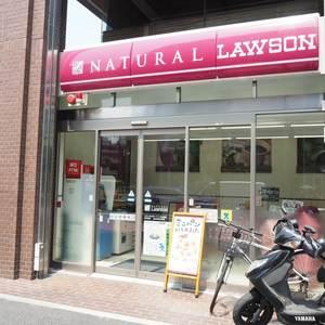 ルイマーブル乃木坂の周辺の食品スーパー、コンビニなどのお買い物