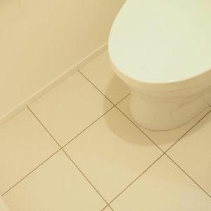 シャトー青山第3(7階,5990万円)のトイレ