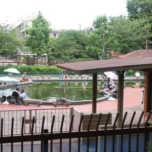 グリーンパーク新向島の近くの公園・緑地