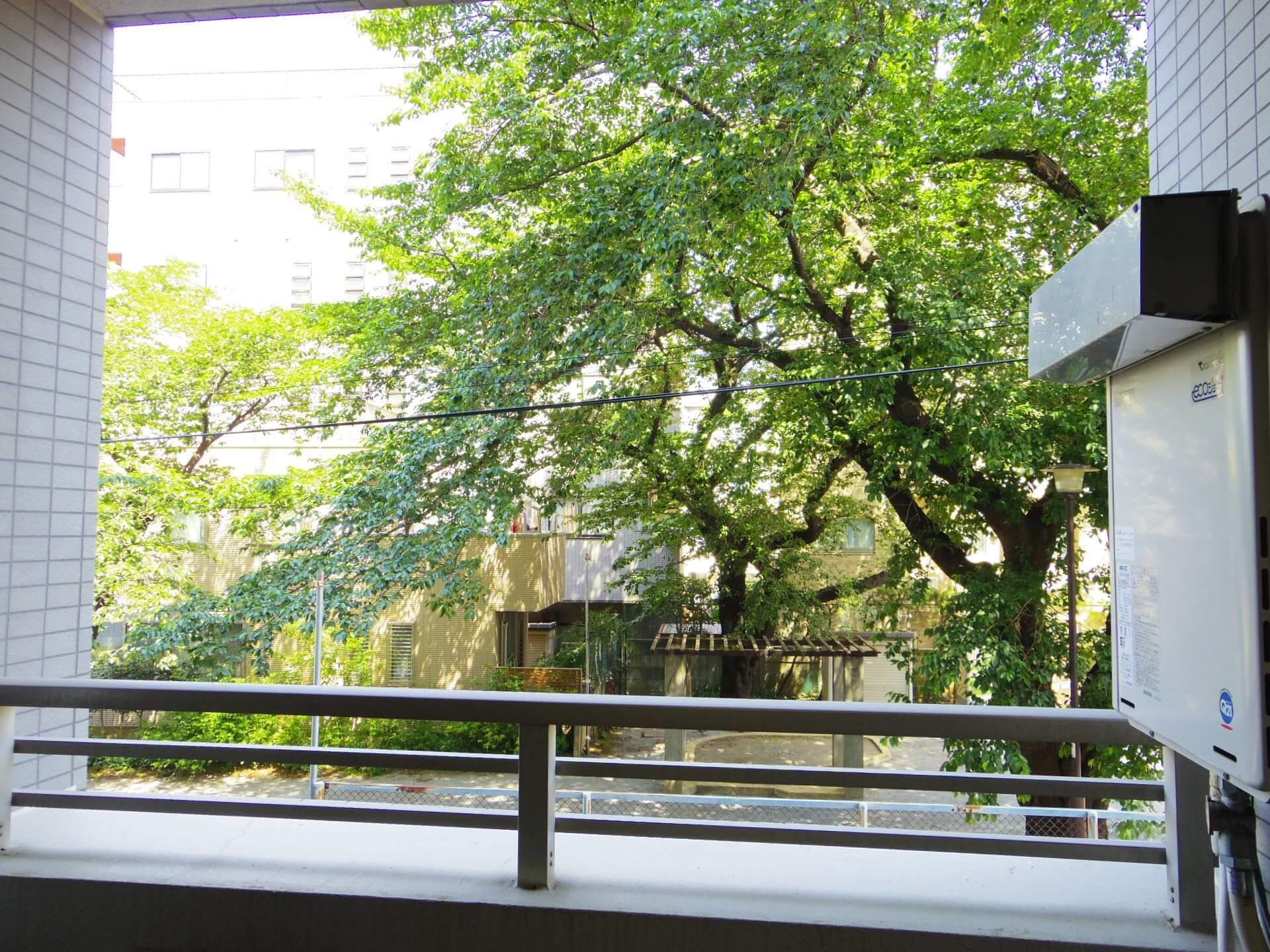 ルイシャトレ中野(2階,4680万円)1枚目