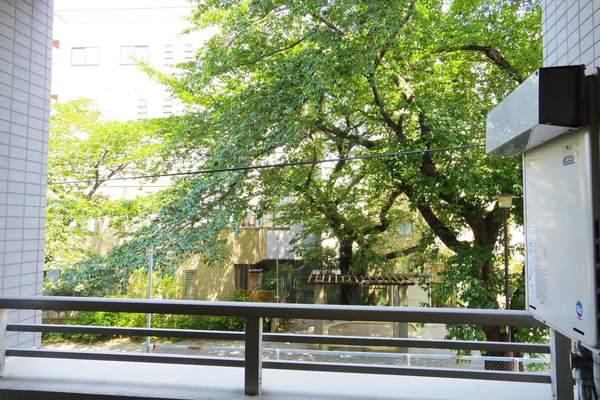 ルイシャトレ中野(2階,4680万円)