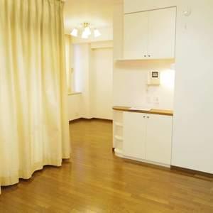 ルイシャトレ中野(2階,4680万円)の居間(リビング・ダイニング・キッチン)