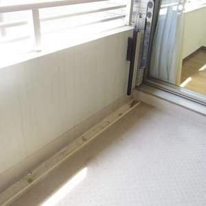 ルイシャトレ中野(2階,4680万円)のバルコニー