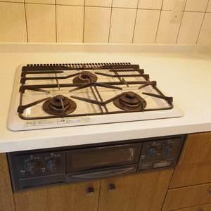 ルイシャトレ中野(2階,4680万円)のキッチン
