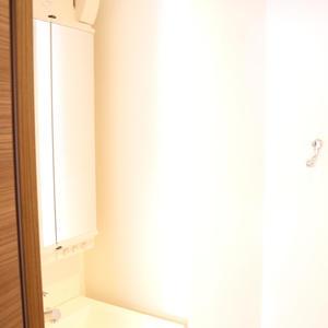 セジョリ駒込(7階,3980万円)の化粧室・脱衣所・洗面室