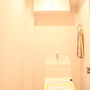 駒込コーポラス(4階,4399万円)のトイレ