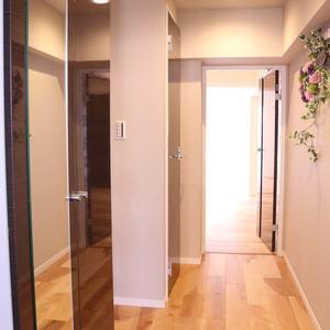 駒込コーポラス(4階,4399万円)のお部屋の廊下