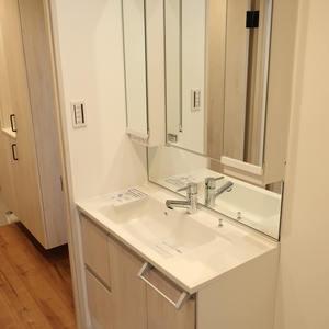 柳橋リバーサイドマンション(6階,)の化粧室・脱衣所・洗面室