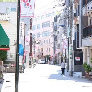 藤和白山コープの最寄りの駅周辺・街の様子