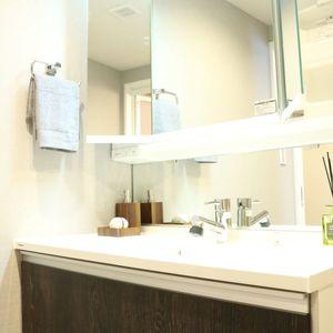 藤和白山コープ(4階,4580万円)の化粧室・脱衣所・洗面室