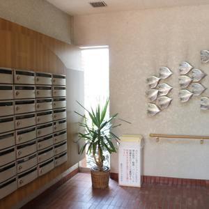 藤和白山コープのエレベーターホール、エレベーター内