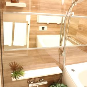 藤和白山コープ(4階,)の浴室・お風呂
