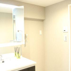 藤和白山コープ(4階,)の化粧室・脱衣所・洗面室
