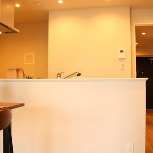 藤和白山コープ(4階,4580万円)の居間(リビング・ダイニング・キッチン)