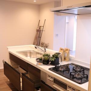 藤和白山コープ(4階,4580万円)のキッチン
