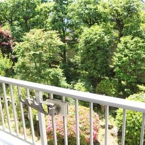 藤和白山コープ(2階,)のお部屋からの眺望