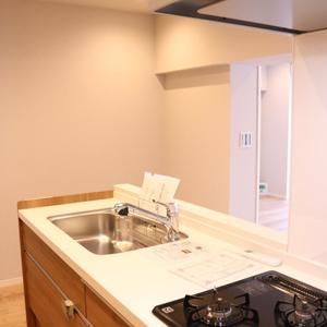 藤和白山コープ(2階,)のキッチン