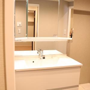 藤和白山コープ(2階,)の化粧室・脱衣所・洗面室