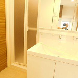 目白ハイビル(4階,3499万円)の化粧室・脱衣所・洗面室