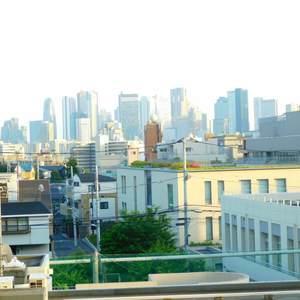 目白ハイビル(4階,)のお部屋からの眺望