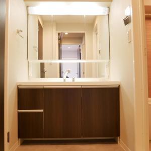 錦糸町第2ローヤルコーポ(3階,)の化粧室・脱衣所・洗面室