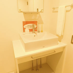 プチモンド目白(4階,)の化粧室・脱衣所・洗面室