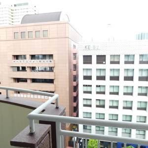 ソフトタウン池袋(9階,3180万円)のバルコニー