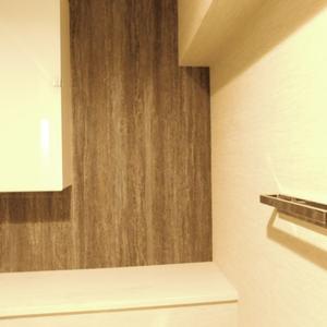 ソフトタウン池袋(9階,3180万円)のトイレ
