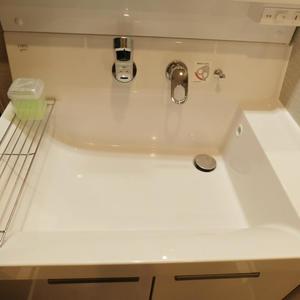 ソフトタウン池袋(9階,3180万円)の化粧室・脱衣所・洗面室