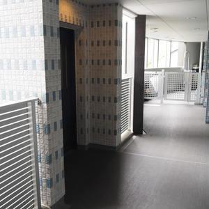 スカイクレストビュー芝浦のエレベーターホール、エレベーター内