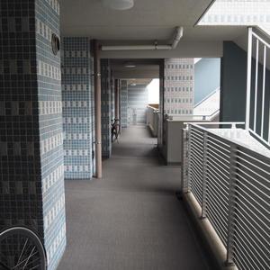 スカイクレストビュー芝浦(2階,)のフロア廊下(エレベーター降りてからお部屋まで)
