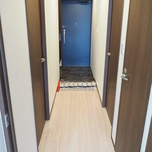 スカイクレストビュー芝浦(2階,5470万円)のお部屋の廊下