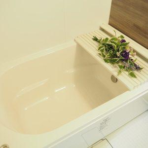スカイクレストビュー芝浦(2階,)の浴室・お風呂