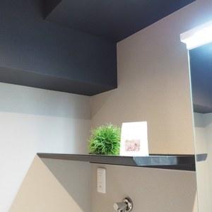 ネオハイツ田町(3階,)の化粧室・脱衣所・洗面室