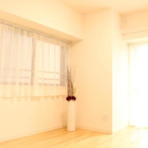 パラスト白山(9階,)の洋室(3)