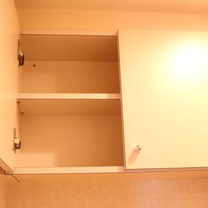 東急ドエルアルス白山(9階,)のトイレ