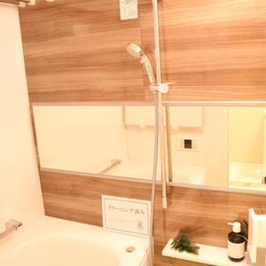 ドリーム小石川(4階,)の浴室・お風呂