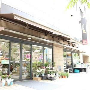 ドリーム小石川の周辺の食品スーパー、コンビニなどのお買い物