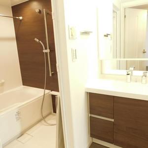 サンクタスデュオ下落合コートA(7階,5380万円)の化粧室・脱衣所・洗面室