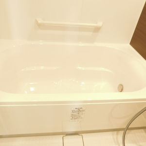 サンクタスデュオ下落合コートA(7階,5380万円)の浴室・お風呂