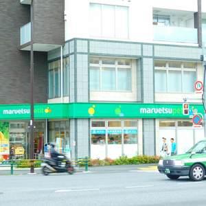 パークコート中落合の周辺の食品スーパー、コンビニなどのお買い物