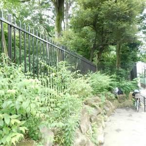 パークコート中落合の近くの公園・緑地