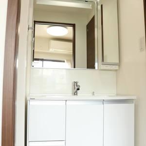 マンション小石川(4階,)の化粧室・脱衣所・洗面室