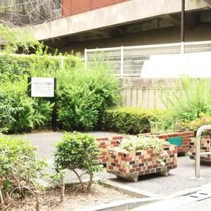 マンション小石川の近くの公園・緑地