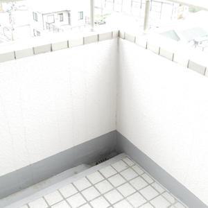 エンブレム下落合(3階,7180万円)のバルコニー