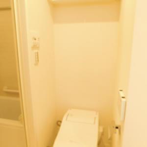 池袋西アムフラット(10階,)のトイレ