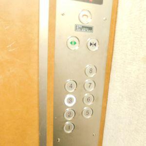 セザール池袋要町のエレベーターホール、エレベーター内